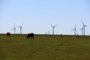Clean energy sector 'uninvestable' due to renewable energy