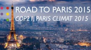 Road to Paris 2015 How do we value carbon