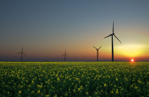 Top Clean Energy Trends of 2015